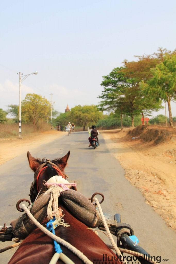 ความรู้สึกในการนั่งรถม้าทั้งวัน มันได้ feel มาก รู้สึกกลมกลืนเป็นส่วนหนึ่งของวัฒนธรรม อยากให้เพื่อนๆ ได้มาลอง