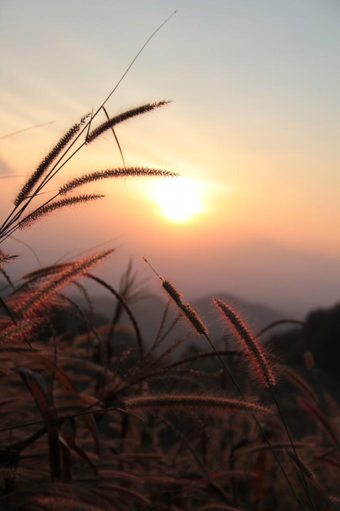 วิวพระอาทิตย์ตกก็งามไม่แพ้กันนะ พูดเลย