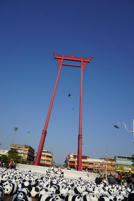 Panda_The Red Swing (11)
