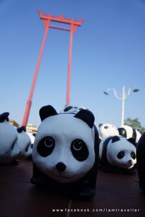 Panda_The Red Swing (14)