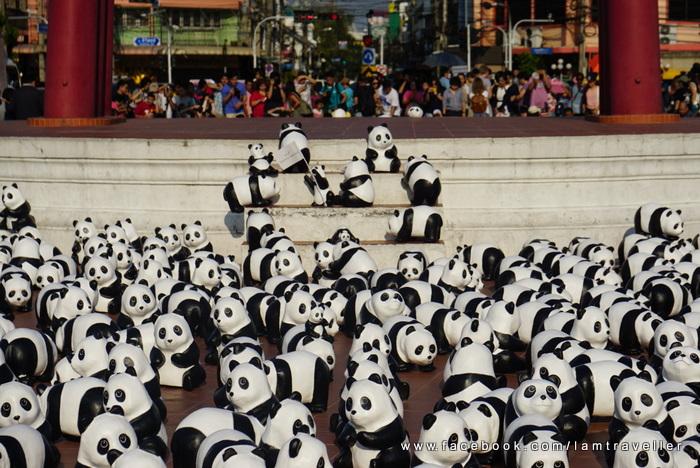 Panda_The Red Swing (3)