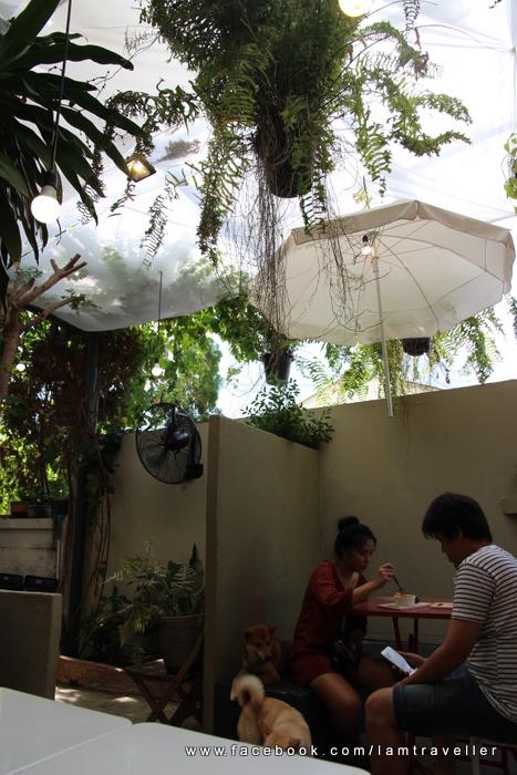 Inu Cafe (10)